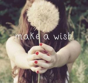 26600-Make-A-Wish